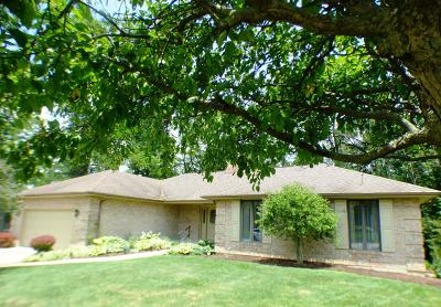 Clinton County Single Family Home For Sale: 92 Garden Circle