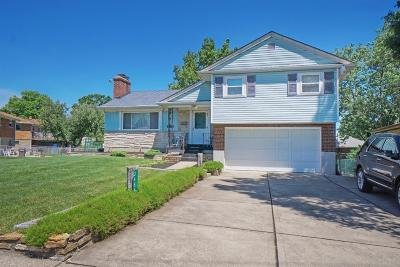 Colerain Twp Single Family Home For Sale: 3454 March Terrace