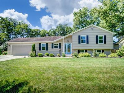 Liberty Twp Single Family Home For Sale: 6745 Wilhelmina Drive