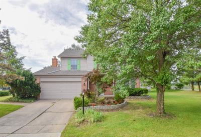 Deerfield Twp. Single Family Home For Sale: 6967 Spring Arbor Boulevard