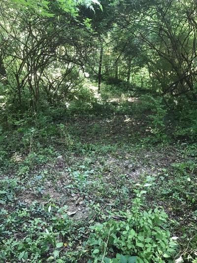 Green Twp Residential Lots & Land For Sale: 5840 Gaines Road