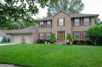 Deerfield Twp. Single Family Home For Sale: 8457 Timber Lane