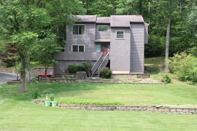 Loveland Single Family Home For Sale: 9590 E Kemper Road