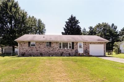 Clinton County Single Family Home For Sale: 7424 Brock Drive