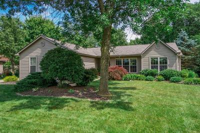 Mason Single Family Home For Sale: 4566 Appaloosa Trail