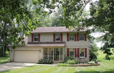 Clinton County Single Family Home For Sale: 704 McJunkin Road