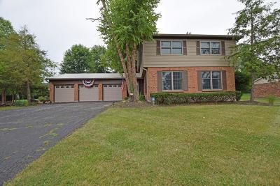 Loveland Single Family Home For Sale: 260 Saddleback Drive