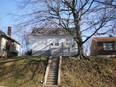 Cincinnati Single Family Home For Sale: 776 Clanora Drive