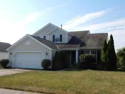 Deerfield Twp. Single Family Home For Sale: 1835 Riverwood Trail