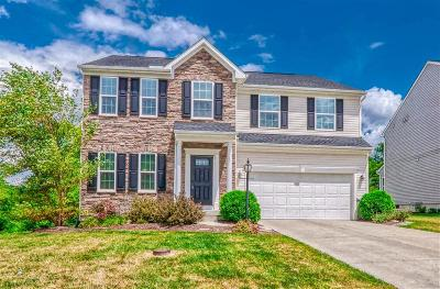 Warren County Single Family Home For Sale: 4162 Fawn Crossing Drive