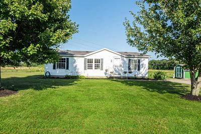 Adams County, Brown County, Clinton County, Highland County Single Family Home For Sale: 17168 Us Rt 68