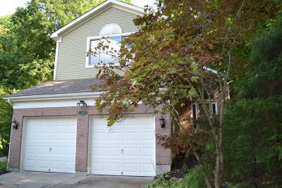 Cincinnati Single Family Home For Sale: 5385 Eagleswatch Court
