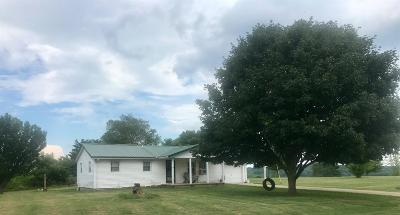 Adams County, Brown County, Clinton County, Highland County Single Family Home For Sale: 9466 Careytown Road