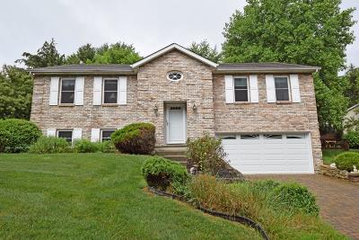 Lebanon OH Single Family Home For Sale: $230,000