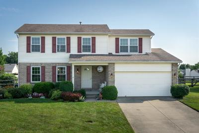 Liberty Twp Single Family Home For Sale: 8012 Tranquility Trace