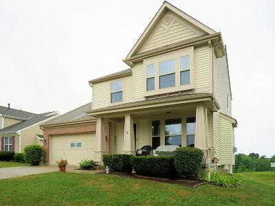 Cincinnati OH Single Family Home For Sale: $229,900