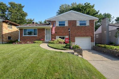 Colerain Twp Single Family Home For Sale: 3691 Brockton Drive