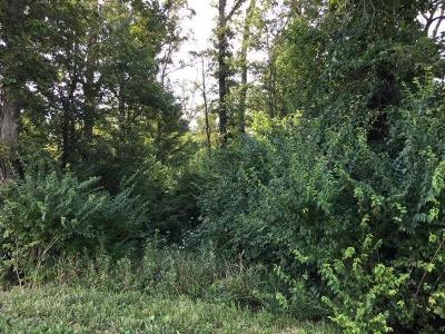 Clinton County Residential Lots & Land For Sale: King Road