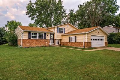 Mason Single Family Home For Sale: 4199 Hanover Drive