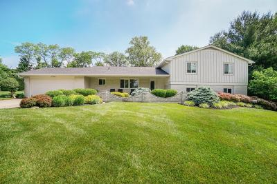 Montgomery Single Family Home For Sale: 9528 Croton Drive