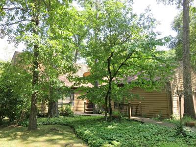 Loveland Single Family Home For Sale: 858 Oak Canyon Drive