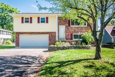 Preble County Single Family Home For Sale: 244 Lakengren Drive