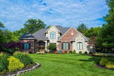 Blue Ash Single Family Home For Sale: 5500 Myerdale Drive