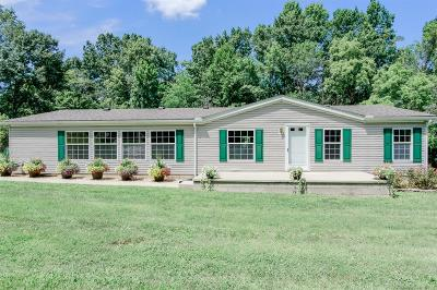 Adams County, Brown County, Clinton County, Highland County Single Family Home For Sale: 8667 George Miller Road
