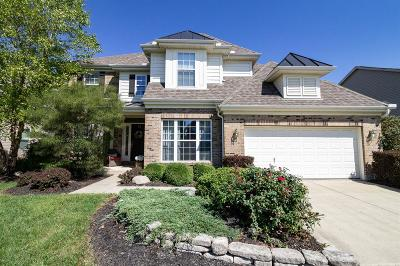 Single Family Home For Sale: 6478 Hampshire Trail