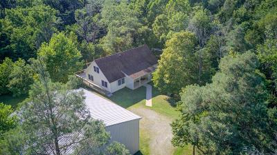 Clinton County Single Family Home For Sale: 1219 Old State Road Road