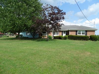 Marion Twp OH Single Family Home For Sale: $198,000