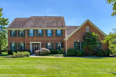 Symmes Twp Single Family Home For Sale: 8365 Chesney Lane