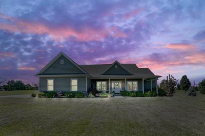 Turtle Creek Twp Single Family Home For Sale: 1950 Fiesta Drive