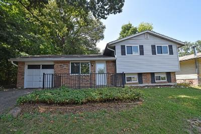 Colerain Twp Single Family Home For Sale: 10203 Dewhill Court