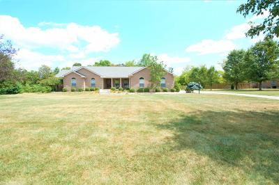 Turtle Creek Twp Single Family Home For Sale: 2246 Twin Oaks Drive