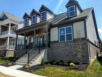 Blue Ash Single Family Home For Sale: 4132 Gosling Avenue #99