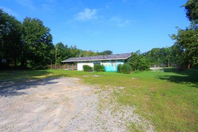 Clinton County Residential Lots & Land For Sale: 741 E Center Street