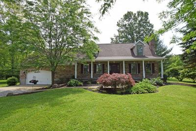 Clermont County Single Family Home For Sale: 154 Amelia Olive Branch Road
