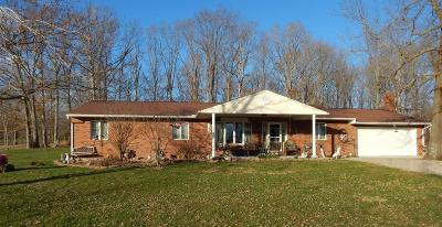 Adams County, Brown County, Clinton County, Highland County Single Family Home For Sale: 1212 Dotson Road