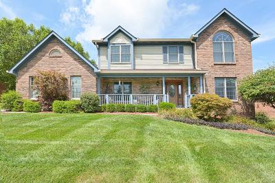 Delhi Twp Single Family Home For Sale: 839 Woodshire Drive