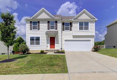 Turtle Creek Twp Single Family Home For Sale: 2098 Prairie Clover Drive