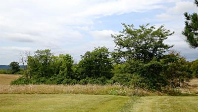 Hamilton Residential Lots & Land For Auction: Smith Road