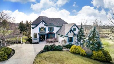 Green Twp Single Family Home For Sale: 7087 Bridgetown Road