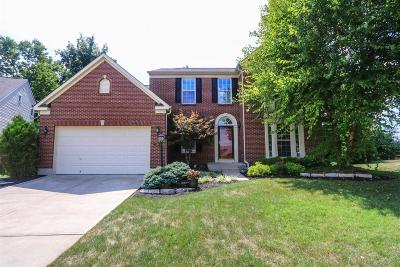 Delhi Twp Single Family Home For Sale: 591 Mitchell Way Court