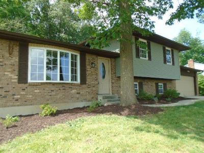 Fairfield Twp Single Family Home For Sale: 3850 Dust Commander Drive