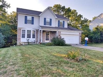 Green Twp Single Family Home For Sale: 5245 Orchardridge Court