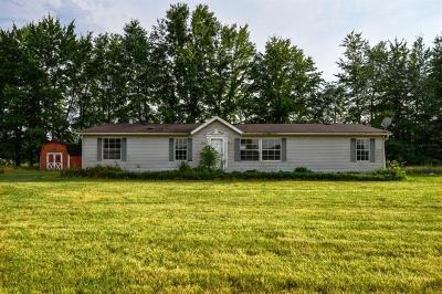 Adams County, Brown County, Clinton County, Highland County Single Family Home For Sale: 3280 Old State