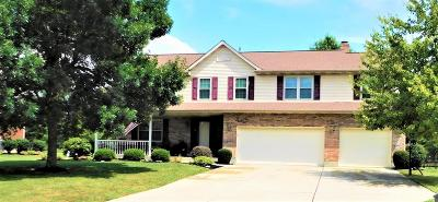 Liberty Twp Single Family Home For Sale: 6561 Willow Dale Court