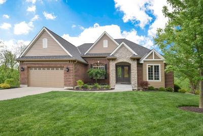 Deerfield Twp. Single Family Home For Sale: 8038 River Vista Court