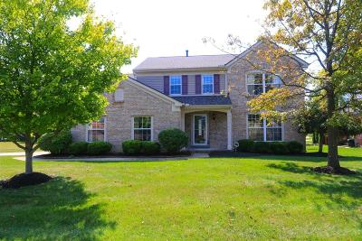Deerfield Twp. Single Family Home For Sale: 4147 S Shore Drive